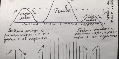 Анализ фигуры голова и плечи
