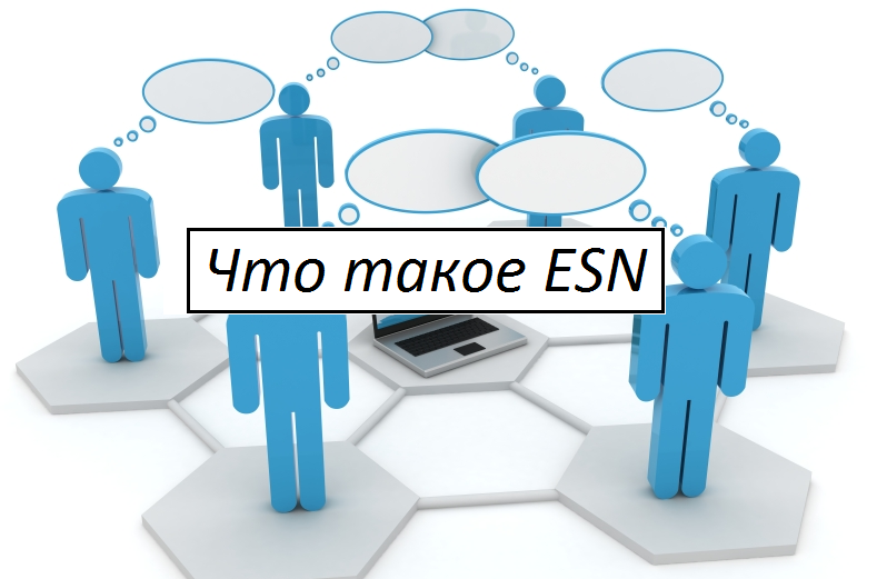 Что такое ESN